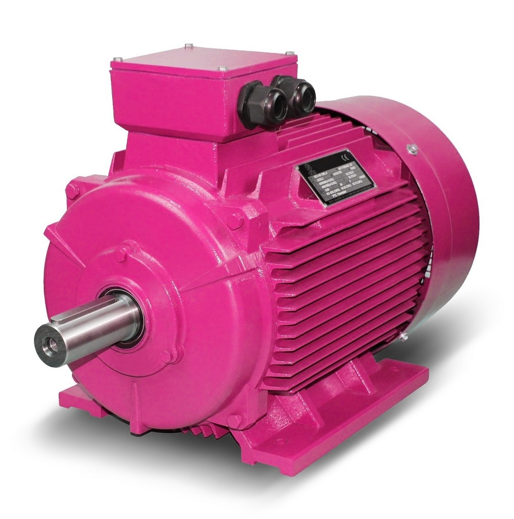 Three-phase motor special paint