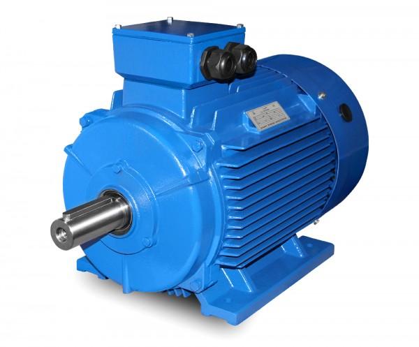 JS- Elektromotor-M1 225S-18,5 kW-8pol-B3