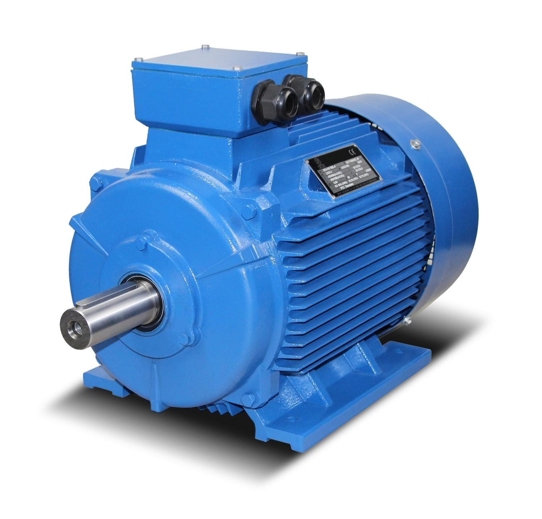 Guss-Elektromotoren- Drehstrommotoren- Asynchronmotoren