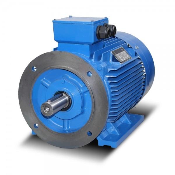 Elektromotor, 200 kW, 1000 min-1, U/min, 400/690 Volt, IE4, 96,3%, 3 x PTC Kaltleiter